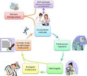 Schéma de la plateforme de génétique moléculaire des cancers