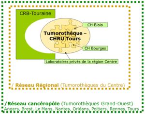 Organisation régionale et inter-régionale