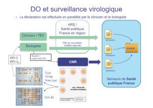 Circuit de la surveillance virologique liée à la déclaration obligatoire de séropositivité VIH